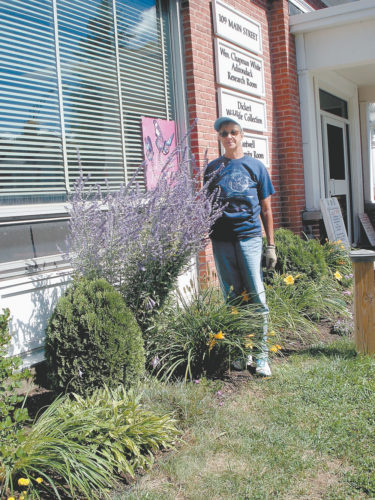LIBRARY GARDEN VOLUNTEER — Stevie Summers, standing by a Russian Sage plant in August, maintains the library garden. Funds from a memorial donation for Dorothy Reichart Meagher were used to purchase annuals, fall mums and garden supplies. (Photo provided)
