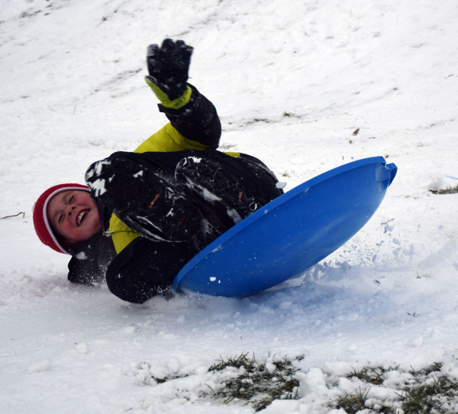 Logan Daunais-Martelle wipes out after hitting a little jump while sledding at the North Country Community College soccer field Saturday afternoon, one of about a dozen adults and kids enjoying a couple of inches of snow. Locals woke up to more snow this morning, and the National Weather Service says the area could get another 2 inches by the end of today. (Enterprise photo — Justin A. Levine)