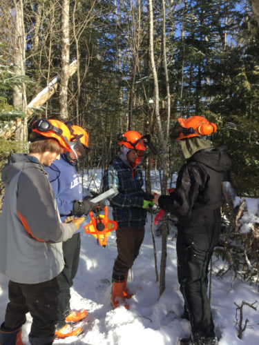 Adirondack Educational Center students Brennan Wamganz, Matthew Kratts and Cody Skiff, all Saranac Lake High School students,  and Gavin Jarvis of Tupper Lake High School, measure tree growth as part of their class.  Students are comparing last year's figures to the new growth. (Photo provided by Adirondack Educational Center)