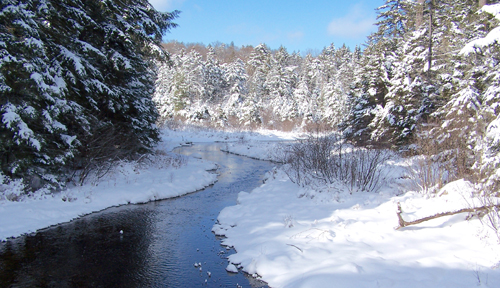 The St. Regis River is lined with snow as it flows out of St. Regis Pond. (Photo — Joe Hackett)