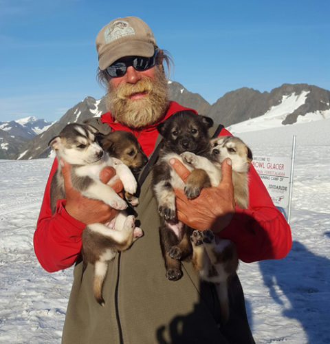 Peter Reuter holds a pack of puppies on Alaska's Punchbowl Glacier last summer. Reuter, who will be racing for the first time in March in the Iditarod, works during the summer for Ididaride Sled Dog Tours. (Photo courtesy of Peter Reuter)
