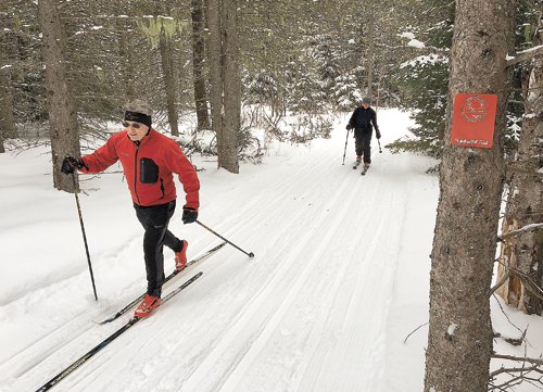 Cross-country skiers kick and glide in fresh snow on the Jackrabbit Trail on their way to Lake Placid from Cascade Cross Country Center on Jan. 29. (Photo provided — Josh Wilson, Barkeater Trails Alliance)