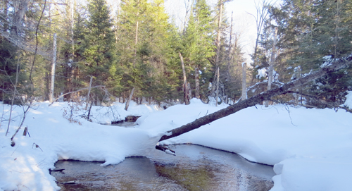 Stream crossings have become more difficult as a result of hidden hazards under the deep snowpack. (Photo — Joe Hackett)