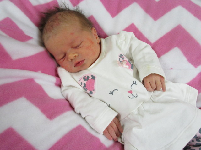 birth Klotz