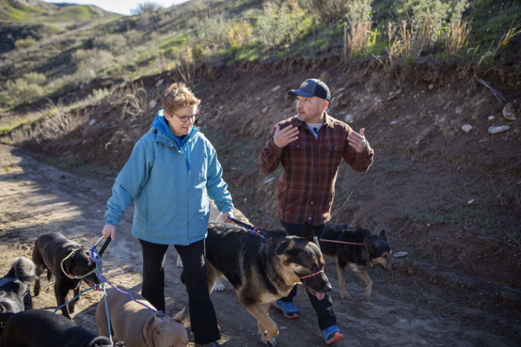 """Courtesy photo """"Dog Whisperer"""" TV show host Cesar Millan, right, and local dog trainer Mary Gail Blasier, left, walk dogs as part of a training program Millan hosted in Santa Clarita, Calif., earlier this year. Blasier said attending this program was an extremely positive experience."""