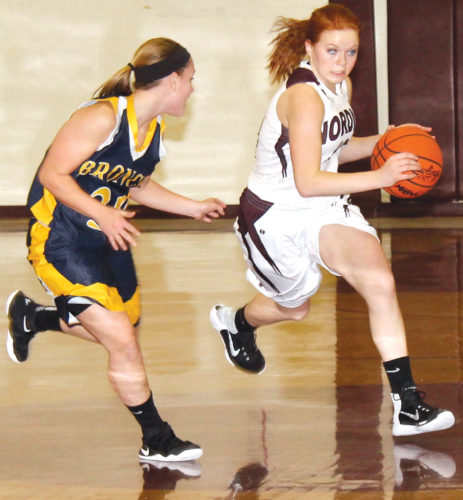 North Dickinson's Juliann Wickman (10) drives on Bark River-Harris' Kelsey Boucher (30) on Friday in Felch. (Theresa Proudfit/The Daily News)