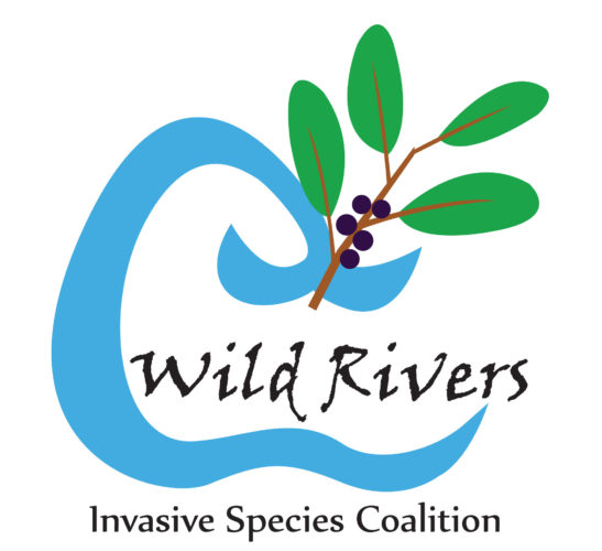wild_rivers