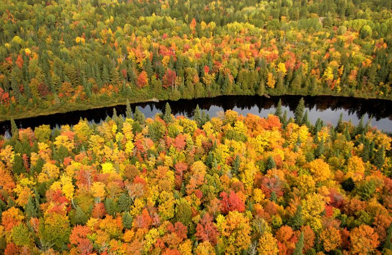 Michigan DNR Photo  An aerial view of the Tahquamenon River and the surrounding fall forest, a popular tourist destination in the eastern end of the Upper Peninsula. Aside from the high-value cultural, recreational and economic opportunities they provide, public lands have enormous impact on the quality of the environment and natural resources.