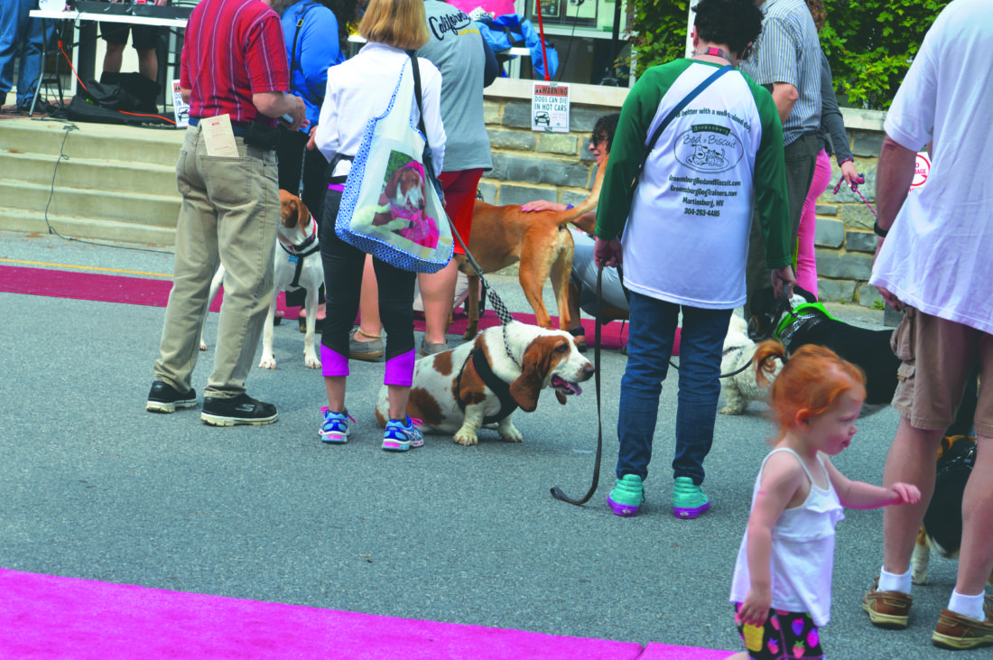 (Journal photo by Adranisha Stephens) Locals and out-of-towners walk the German Street during the third annual Shepherdstown DogFest on Sunday.