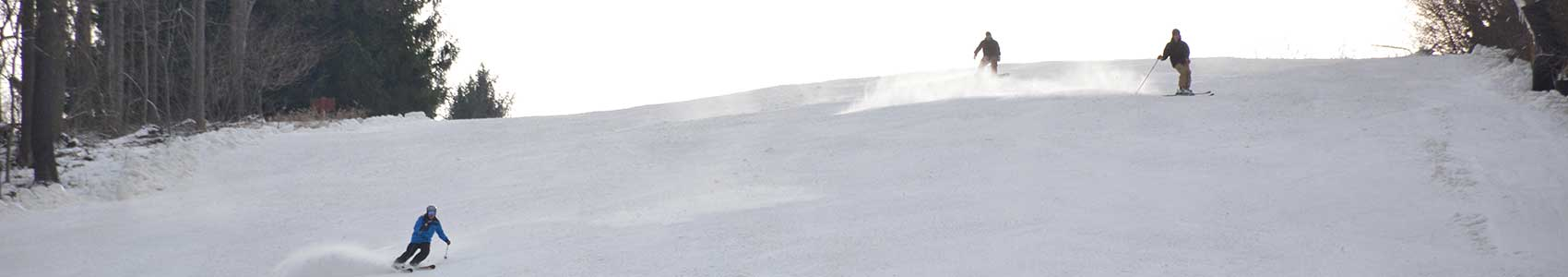 wildcat-skiers