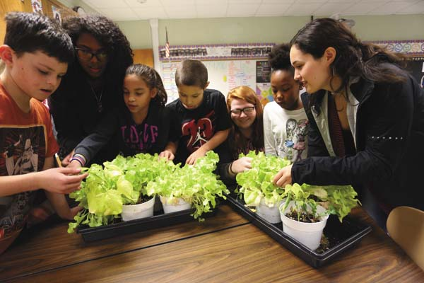 Riverside third-graders and their box buddies look at lettuce plants. (Photo courtesy of Michael Forster Rothbart)