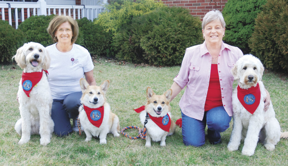 Sentinel photo by BUFFIE BOYER  Four area dogs have earned their Therapy Dog International certification and are ready to visit with the community. Dog owners Bev Stimely, left, and Margie  Aurand, are pictured with dogs, from left, Lily, Ralph, Abby and Ellie.