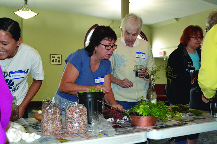 WENDY STIVER/THE EXPRESS Candy Gore, center, gives tips on making a fairy garden to Covenant Cafe participants.