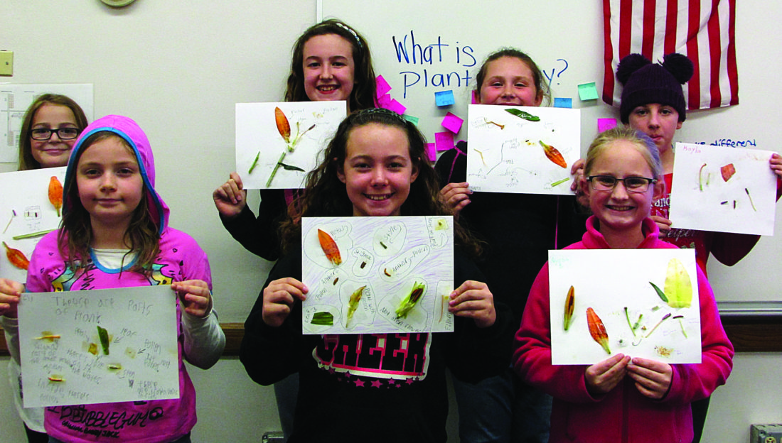 EMMA GOSALVEZ/THE EXPRESS Fifth graders proudly display their finished plant dissections. Front row, from left: Lily, Morgan and Alyssa; back row, Grace, Bailey, Kira and Kayla.