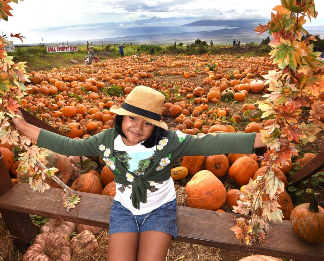 Pomaika'i Elementary School 2nd-grader Isabella Sarol, 7, poses for a photo for her father and grandmother Wednesday afternoon while visiting the pumpkin patch at Kula Country Farms.  The Maui News / MATTHEW THAYER photo