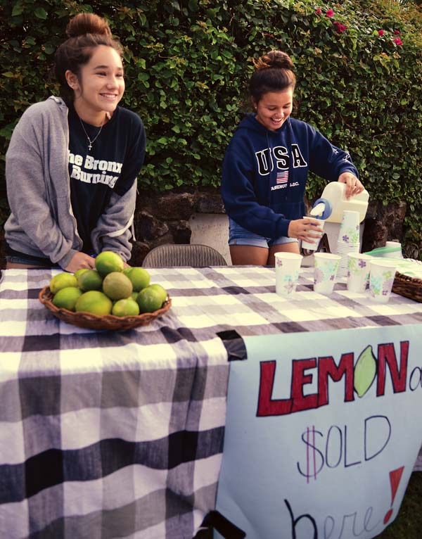 mt-lemonade-stand-1-7-17