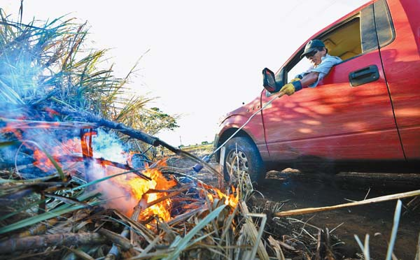 Fermin Domingo uses a propane torch to light small fires along the perimeter of a Hawaiian Commercial & Sugar Co. cane field.  The Maui News / MATTHEW THAYER photo