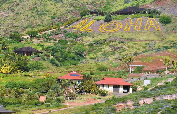 mt launiupoko aloha 1-12-17