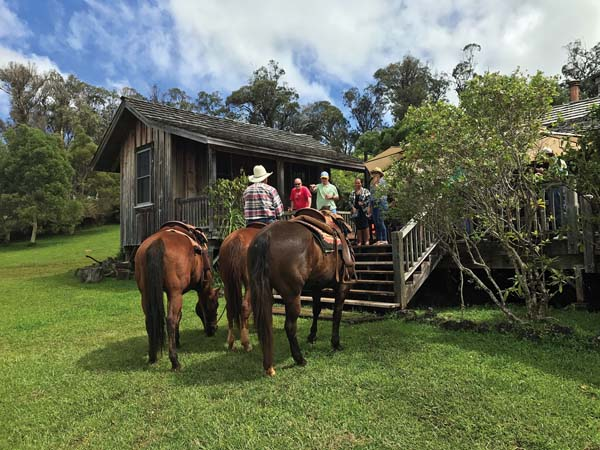Peter Baldwin (on horseback) greets the Dorvin D. Leis Co. ohana to commence their Pi'iholo Ranch experience — part of a daylong Upcountry adventure.   KASEY KERBOX photo
