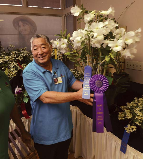 mt orchid show 4-15-17
