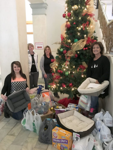 Webster County employees recently participated in a Caring and Sharing program to collect donations for The Lord's Cupboard and the Almost Home Animal Shelter. A competitive element was built into this year's program, which really increased the giving. The program allowed the county to make substantial donations to each organization. All items were delivered to the recipient organizations on Dec. 19 and 20. Pictured from left are Jesse Albrecht, Caroline Steinberg, Brenda Angstrom and Carolyn Clark.