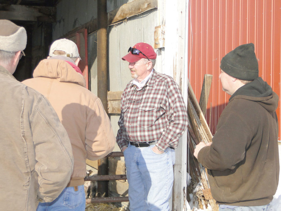 -File photo  Dr. Dan Morrical, in red hat, greets farmers in this February 2015 file photo during a lambing workshop held on the Dave Laughton farm near Le Mars. Morrical said U.S. demand for lamb is strong.