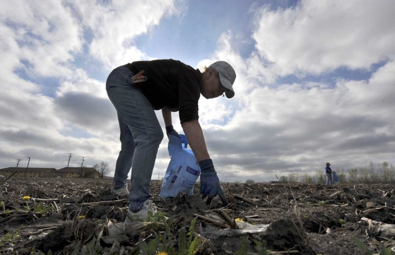 -Messenger photo by Hans Madsen  Gail Balbraith, of Fort Dodge, a volunteer with Pride In Community Appearance, helps pick up litter during the 2016 FOD Walk in the east side business district.
