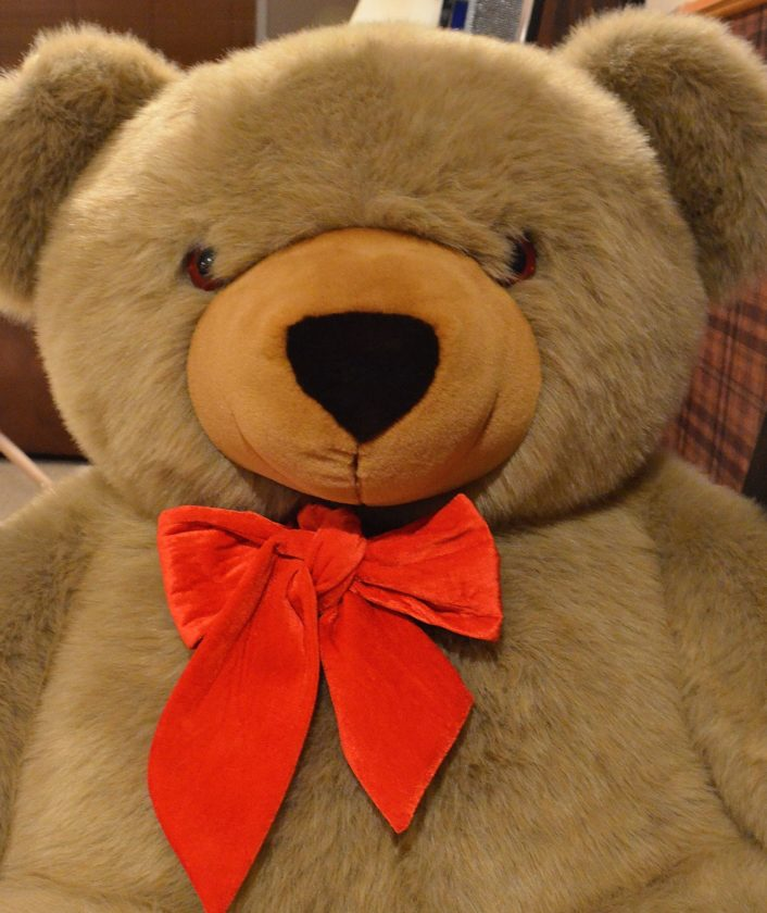 Eloise Ogden/MDN A giant 5-foot plush teddy bear is a Valentine's Day gift a special someone will always remember.