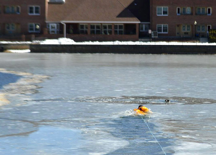 Photo courtesy of Nashua Fire Rescue A firefighter heads to help a dog named Whisky that had fallen through ice on Sandy Pond in Nashua Wednesday.
