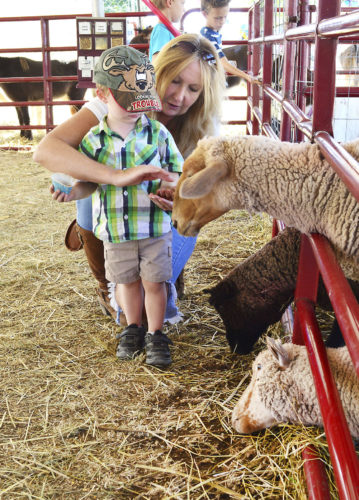 Photo by Doug Loyer Lori Webb helps her grandson Diesel Harra, 2, feed the sheep at the Barlow Fair on Sunday.