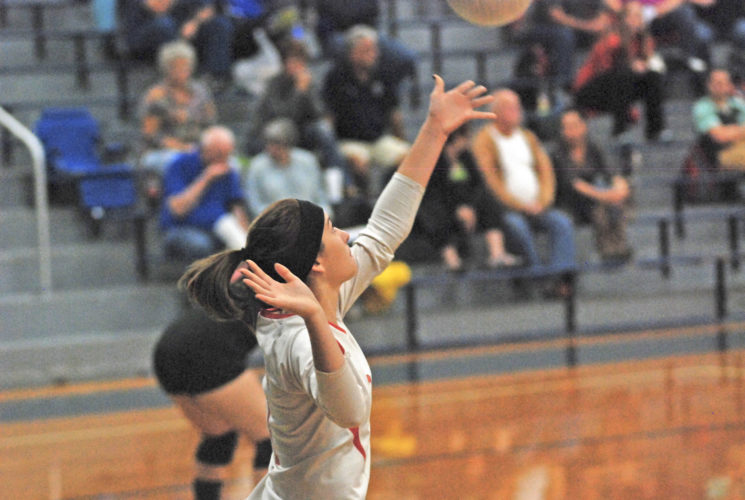 Photo by Jay W. Bennett   Calhoun County libero Kaylea Bennett prepares to serve the ball Thursday night against host Parkersburg Catholic. The Red Devils swept the Crusaderettes in the best-of-five dual.