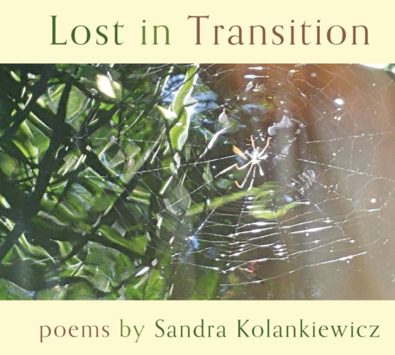 """Photos Provided The cover of """"Lost in Translation,"""" Sandra Kolankiewicz's latest chapbook of poems to be published by Finishing Line Press."""