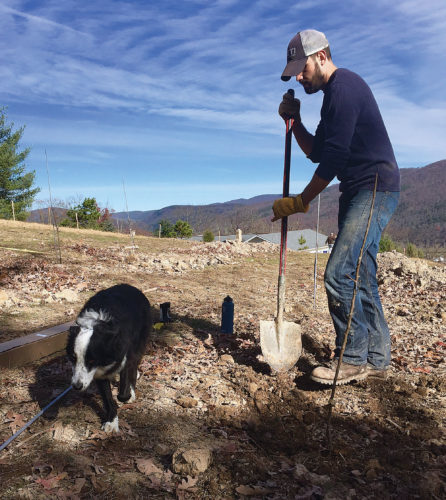 Photos Provided Brad Glover plants apple trees in Swilled Dog Hard Cider's new orchard in Franklin, W.Va. Lucy, the company's mascot, is assisting.