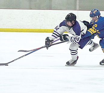 Staff photo by Steve Muscatello New Ulm's Bayler Kraus (14) tries to get past Waseca's Brandon Dahnert (19) during the second period Thursday at the New Ulm Civic Center. For more photos of this event go to cu.nujournal.com