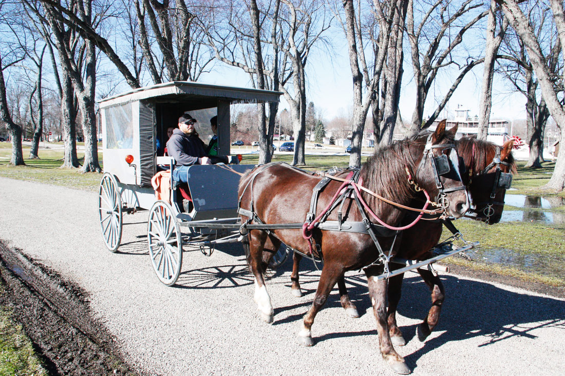 OBSERVER Photos by Tonja Dodd Families enjoyed carriage rides pulled by Magic Moments carriages all weekend at the event in Mayville.