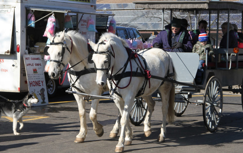 Horse-drawn wagon rides by Magic Moments Carriage Rides.