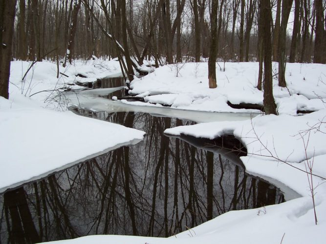 Winter at the Chautauqua Watershed Conservancy's Outlet Greenway Preserve.  CWC photo