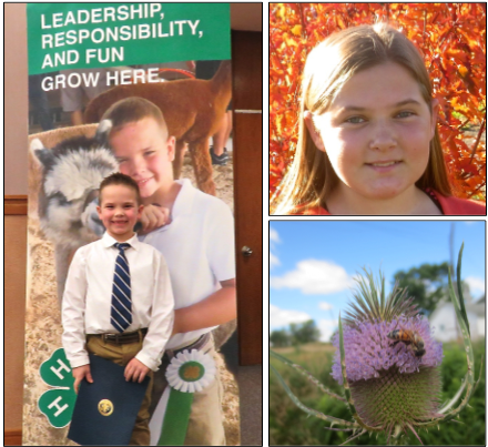 """At left, with his recognition award in hand, Easton Pence poses in front of the new """"4-H Grows Here"""" marketing campaign banner bearing his photograph. At top right is Amelia Maul, whose award-winning photograph from last year's Cattaraugus County Fair appears on the cover of the 2016 Annual Report of the Cornell Cooperative Extension, Cattaraugus County and appears above."""