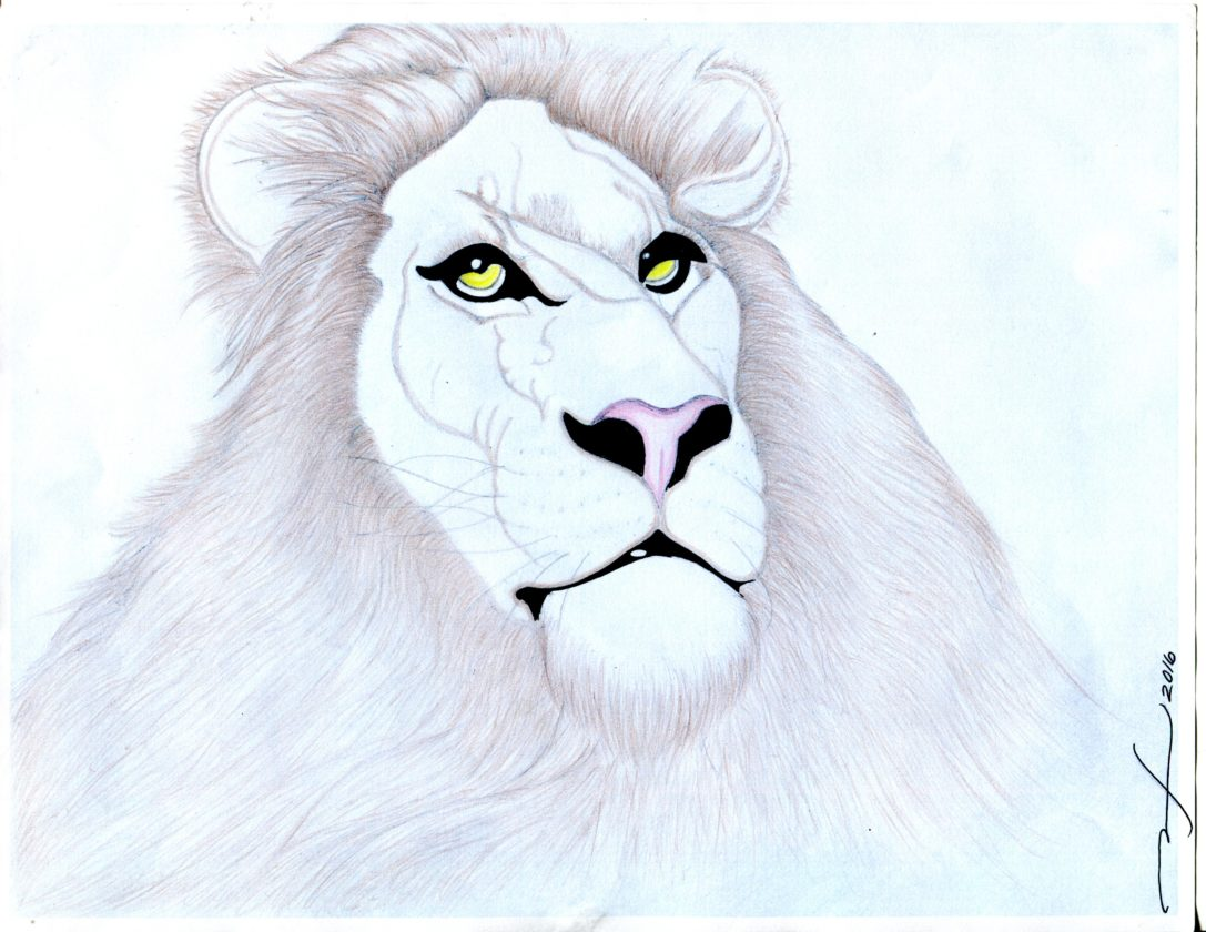 A lion by Quinones with light touches of color.