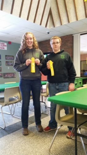 Miranda Nickerson and Cole Nickerson, Clymer Eager Beaver 4-H Club members display their ribbons earned at the Western District 4-H Dairy Bowl Contest.                                                                Submitted photo