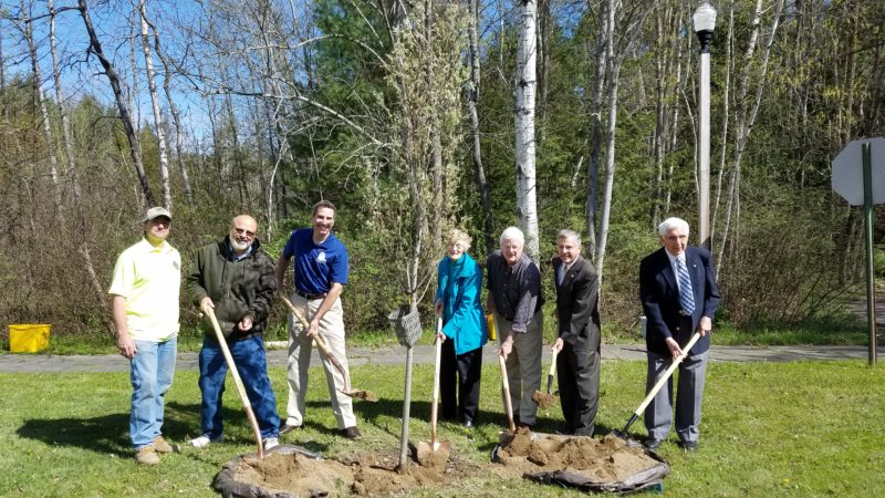 Mayor Sam Teresi joined Pat Sundell, and members of the city's parks committee and RTPI board of directors Friday for a ceremonial tree planting in honor of the late Bob Sundell. P-J photo by A.J. Rao