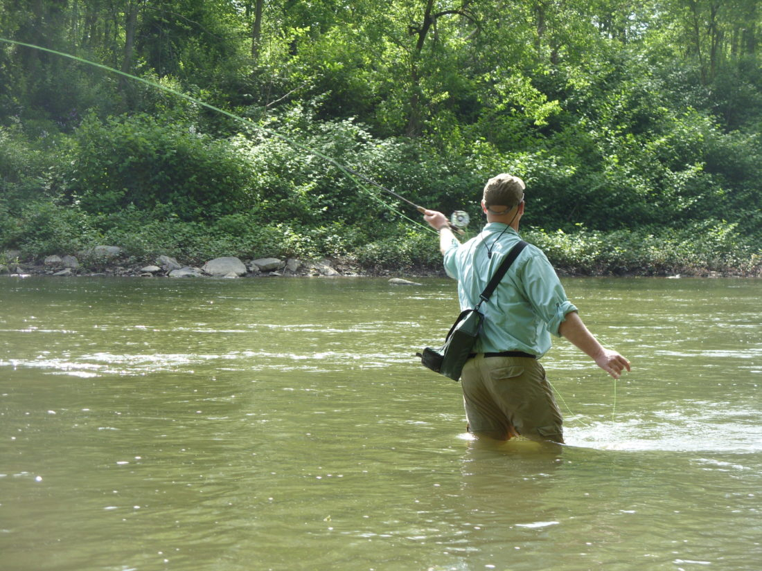 Go fish news sports jobs the review for Fly fishing classes