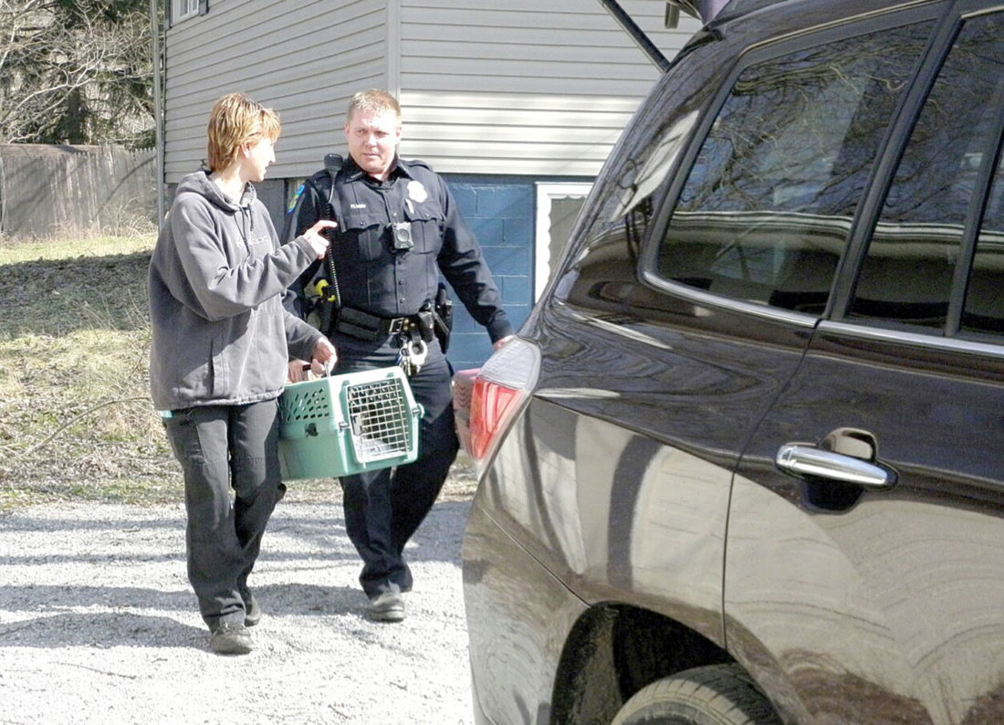 Brenda Austin with Angels for Animals and St. Clair Patrolman Max Nolder removed two cats from a Gonzales Avenue home in Calcutta where the dog warden also removed three dogs earlier in the day. (Photo by Jo Ann Bobby-Gilbert)