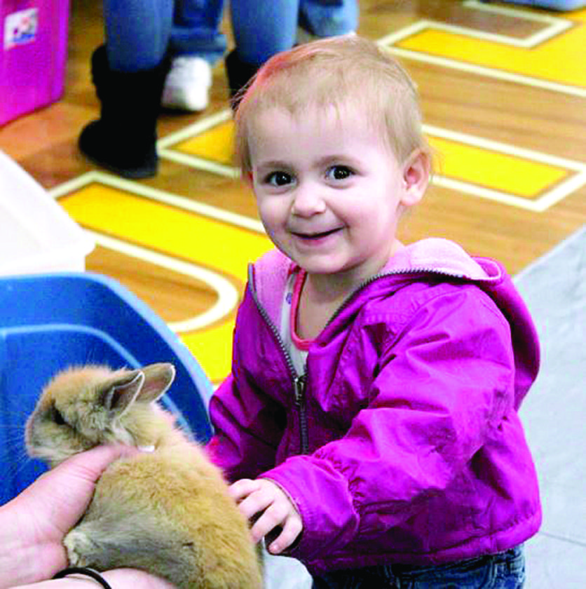 Jordynn Ulizio, 1, daughter of Victoria Doughty of Wellsville, makes friends with a rabbit at the SLHS FFA petting zoo during the 10th annual District Showcase at Southern Local. (Submitted photo)
