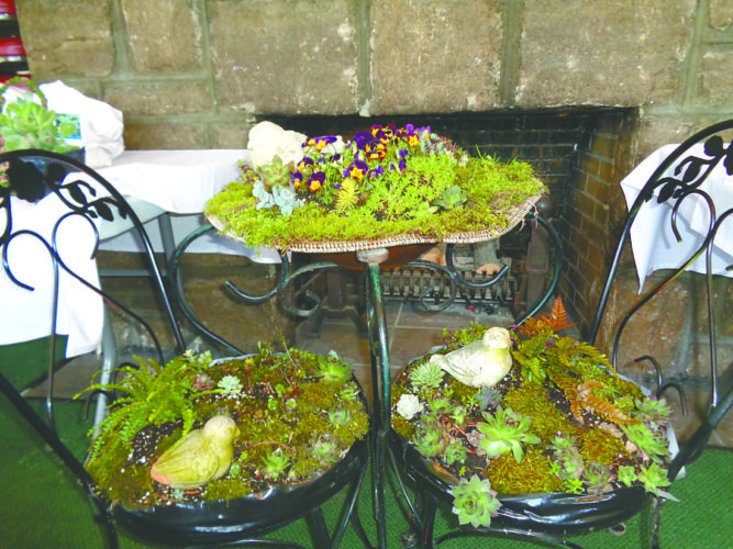 Succulent Bistro Set designed by Lisa Chronister (Submitted photo)
