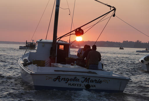 ASSOCIATED PRESS FILE PHOTO In this Oct. 8, 2015, photo, oyster boats deploy their dredges and work a small section of the Rappahannock River as the sun rises near White Stone, Va. President Donald Trump's budget proposal would eliminate federal funding for the program that has coordinated Chesapeake Bay cleanup efforts for decades. Trump's spending plan for the 2018 budget year, released Thursday, significantly reduces funding for the Environmental Protection Agency.