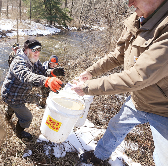 Volunteer Ira Hutchins of Unityville is handed a bucket full of trout in Little Muncy creek near Lairdsville while helping with the PA Fish and Boat Commission trout stocking on Wednesday. KAREN VIBERT-KENNEDY/Sun-Gazette