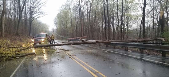 PHILIP A. HOLMES/Sun-Gazette Firefighters respond Sunday when a tree fell on Route 654 a mile west of DuBoistown.