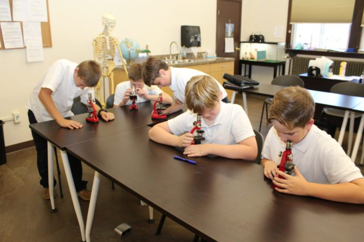 Photo Provided From left, sixth-graders Briar Provenzano, Seth Kucera, Brody Wall, Drew Gadd and Luke Doyle practice their microscope skills in the newly renovated science lab at Corpus Christi School in Warwood, Wheeling.