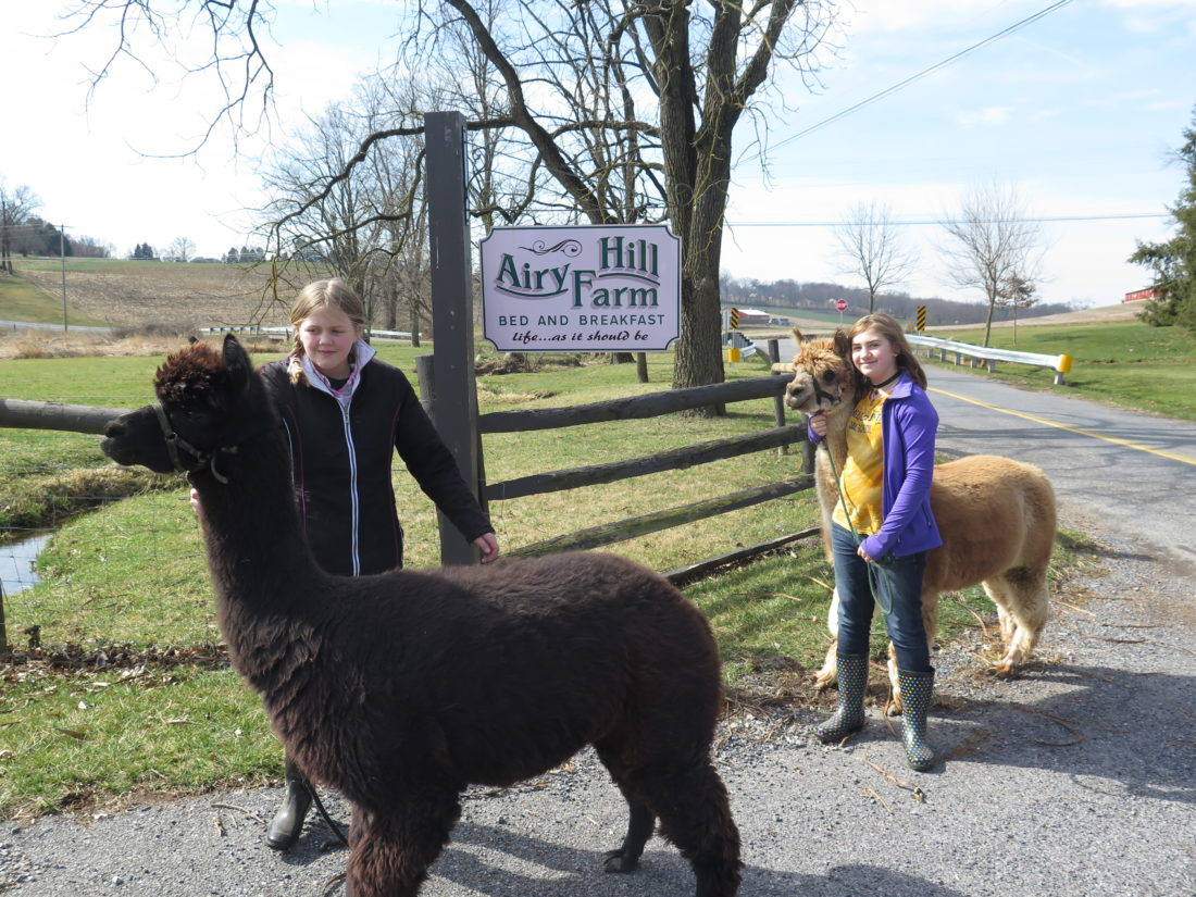 Emma poses with Jerry, left, and Jean has Jed near the entrance to Airy Hill Farm Bed & Breakfast in Manheim, Pa.  Photo by Betsy Bethel